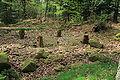 Camp celtique de la Bure - tétrastyle 2.jpg
