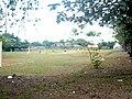Campo deportivo, salida sureste del Parque Natural de Pucallpa.jpg