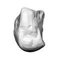 Capitate bone (left hand) 05 palmar view.png