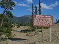 Carcross desert 1 (1189914050).jpg