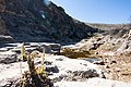 Carlsbad Caverns National Park and White's City, New Mexico, USA - 48344861051.jpg