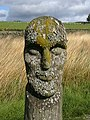 Carved wooden head - geograph.org.uk - 718794.jpg
