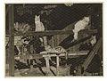 Cattery, ca. 1925-ca. 1945, Sam Hood (29535783430).jpg