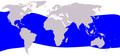 Cetacea range map Dwarf Sperm Whale.png