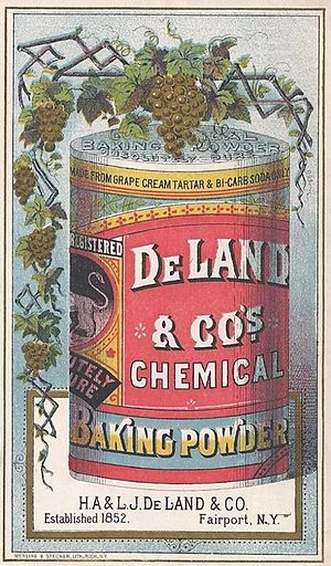 Baking powder - Image: Chemical Baking Powder