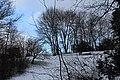 Chemin de sous bois le long de l'Aire - panoramio (38).jpg