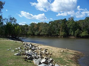 Choctawhatchee River - Between Westville, Florida and Caryville, Florida