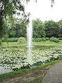 Chorzow Klimzowiec Park Roz.jpg
