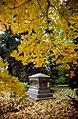 """Cincinnati – Spring Grove Cemetery & Arboretum """"Autumn Cover"""" (15544573449).jpg"""