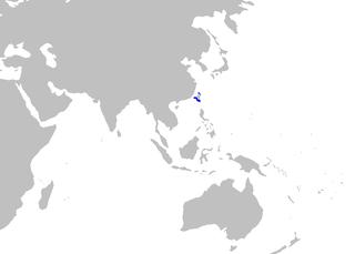 Saddle carpetshark - WikiMili, The Free Encyclopedia