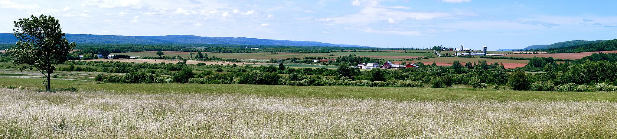 Central Valley. Looking west southwest across the expansive farms in Clarence, Annapolis Valley, Nova Scotia