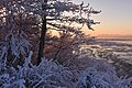 Coastal Trail in winter. Anchorage, Alaska (32738833136).jpg