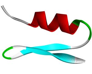 Cobatoxin - Ribbon diagram of cobatoxin 1
