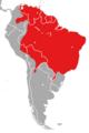 Coendou prehensilis Distribution Map.png