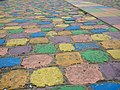 Colorful sidewalk in La Boca.jpg