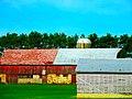 Columbia County Farm - panoramio.jpg