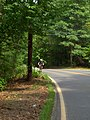 Concord St., between Carlisle and Concord, MA - panoramio.jpg