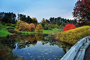 Cornell Botanic Gardens - One of the ponds at the Cornell Botanic Gardens
