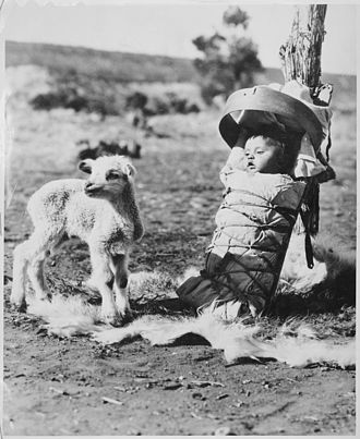 Baby transport - Navajo child in a cradleboard, Window Rock, Arizona, 1936