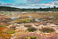 Craters of the Moon TAUPO-1167.jpg