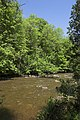 Credit River Near Belfountain (160427506).jpg