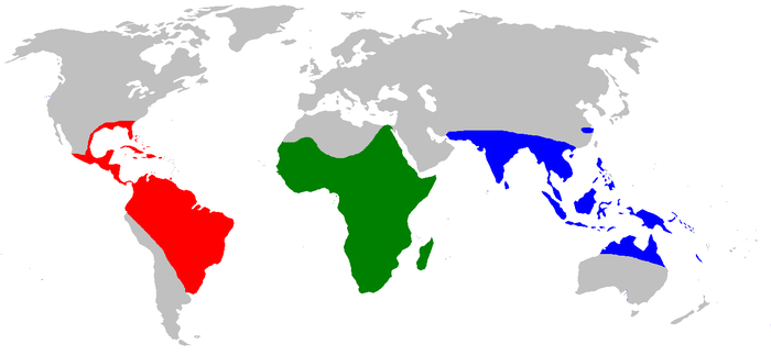 Crocodilia World.distribution colour.PNG
