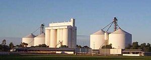 Crystal Brook, South Australia - The rising sun catching the Crystal Brook grain silos on a clear winter's morning; the town sports oval in the foreground