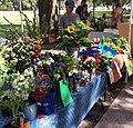 Cut Flowers for Sale at Farmers Market.jpg