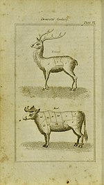 Diagram of two animals and their cuts of meat. The cuts are for venison and beef