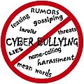 Cyber-bullying-122156 960 720.jpg