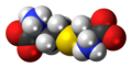 Cystathionine zwitterion 3D spacefill.png