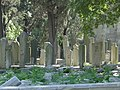 DSC04782 Istanbul - Cimitero di Eyüp - Foto G. Dall'Orto 30-5-2006.jpg