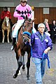 2018 Breeders Cup Wikipedia