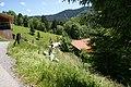 Dafins-Morsch-mow the steep slope-01ASD.jpg
