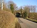 Dallygate Lane railway bridge - geograph.org.uk - 700801.jpg