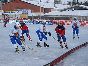 Norway women's national bandy team - A bandy international between Finland and Norway in the 2004 Women's World Championships in Lappeenranta