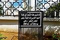 Dardara - arbre de Larbi Oueld Khlifa الدردارة - شجرة العربي ولد خليفة - panoramio.jpg