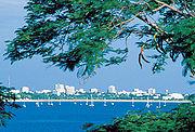 Darwin 1993