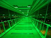 Davenport Skybridge at night