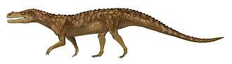 Santa Maria Formation - Decuriasuchus