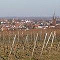 Deidesheim - panoramio (2).jpg