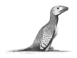Deinonychus-antirrhopus jconway.jpg