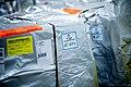 Delta delivers COVID-19 vaccine shipments (50734277477).jpg