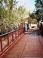 Desert Botanical Garden - panoramio (1).jpg