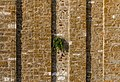 Detail of the tower of St. George's Parish Church, Piran, Slovenia 01.jpg
