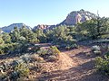 Devil's Bridge Trail, Sedona, Arizona - panoramio (13).jpg