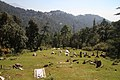 Dharamsala-St John in the Wilderness-20-Friedhof-gje.jpg