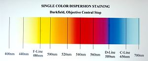 Dispersion staining - Chart 2: These are the dispersion staining colors associated with different λo's when using any of the methods that generate a single color.