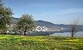 Dojran Lake 227.jpg