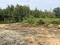Dunes Charmes Sermoyer 38.jpg